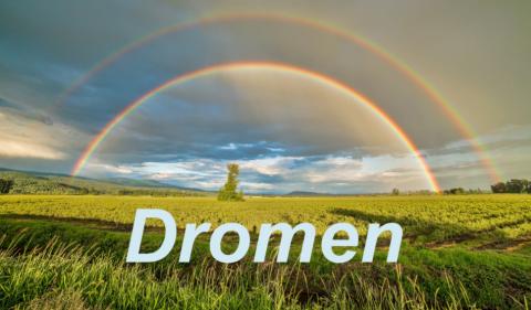 Gedichtenwedstrijd Dromen